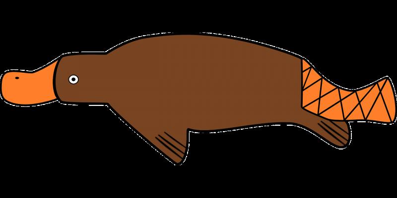 El ornitorrinco, características, hábitat, reproducción