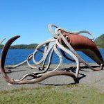 Calamar gigante