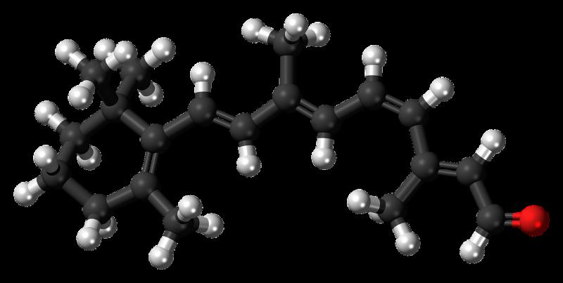 Peptidoglicano o mureína