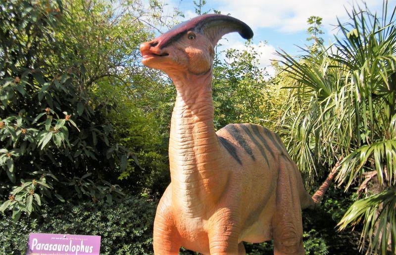 El parasaurolophus