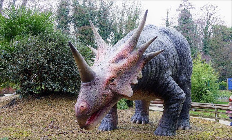 Triceratops Características, alimentación, rasgos, defensa Dinosaurio