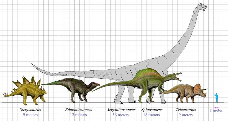 Argentinosaurus Características, alimentación, hábitat Dinosaurio