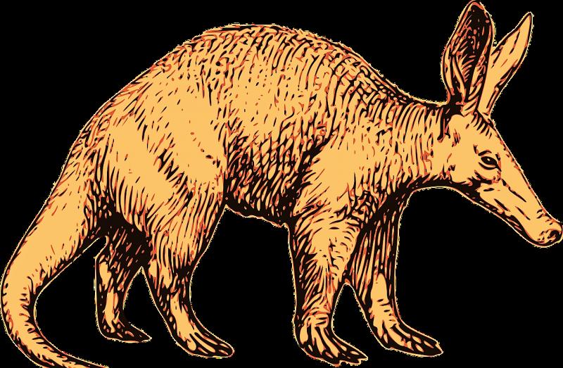 Cerdo hormiguero
